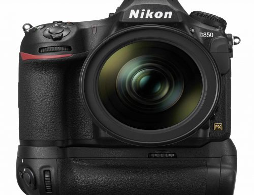 Shooting With Nikon Workshops & Seminars…